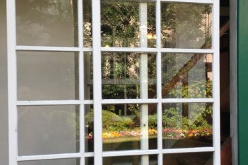 <p>The garden reflected in the old windows</p>