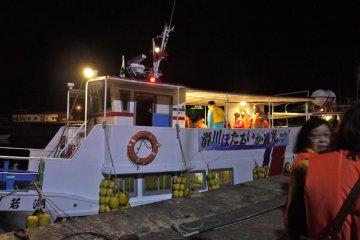 Boat tour for seeing Namerikawa's firefly squid (hotaruika)