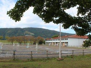 このホースパークでは、ホースパーク所有の馬の他に、個人馬主の預託馬と福井工業大学・付属高校預託の馬をもって、ここで馬術競技のトレーニングが行われている