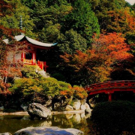 Autumn at Daigo Temple