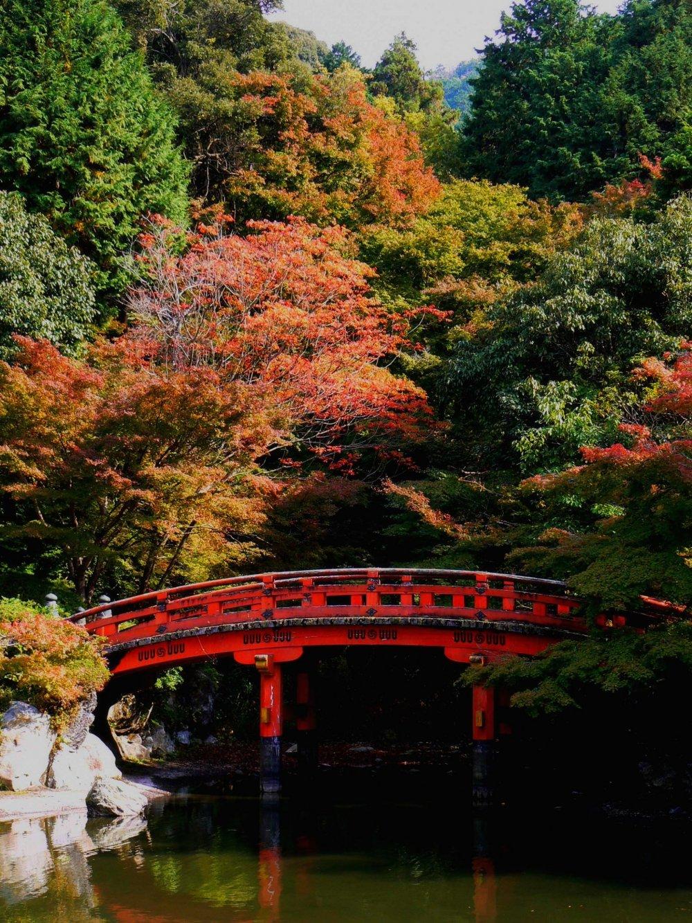 Autumn foliage creates a wonderful background for the bridge