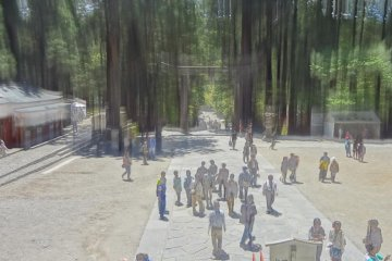 <p>Enshu created this effect to make the space appear much larger than it actually was</p>
