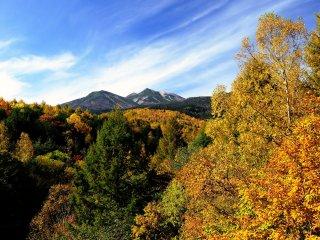 遠景の山が錦秋を纏っている