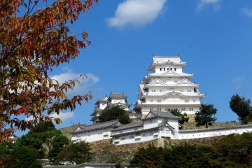 <p>In Japan, its majestic beauty and immaculate white&nbsp;color inspired the nickname The White Heron.&nbsp;</p>