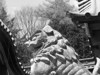 One of the shrine's guardians