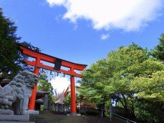 Pintu masuk Kuil Fujishima di lereng Gunung Asuwa. Gerbang torii merah dan pohon hijau di bawah langit biru membuat kontras yang mencolok.