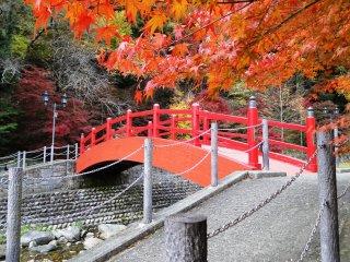 Sebuah jembatan merah menjadi sorotan penuh warna dari aktivitas jalan-jalan di Ujo Park