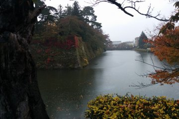 <p>A view of the moat</p>