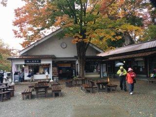 Деревья возле туристического центра