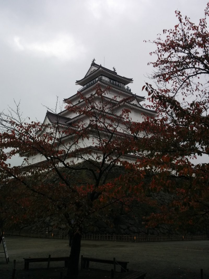 <p>The castle on a rainy day, obscured by red leaves</p>