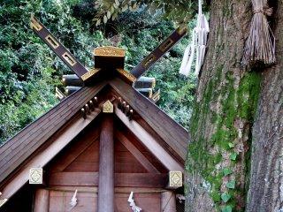 Орнаменты на крыше позади священного дерева