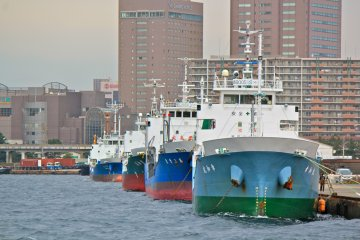 <p>Some of these large vessels make for a great photo opportunity</p>