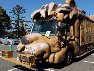 Hầu hết mọi người kết thúc với chuyến đi xe buýt từ nơi bạn có thể được an toàn và có thể nhìn thấy các loài động vật hoang dã, cũng như có thể cho chúng ăn đặc biệt là gấu và sư tử.