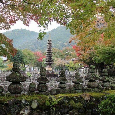 Kyoto Adashino Nenbutsu-ji 4 of 4