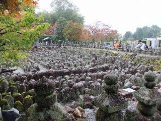 積年の合間に風化され丸くなり小さくなった石仏が整然と立ち並ぶ