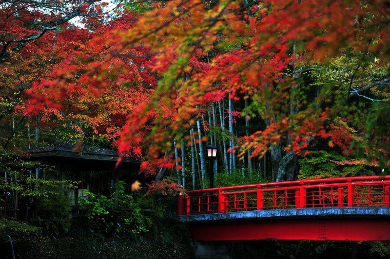 <p>Мост Кацура и река Сюдзендзи. Осенние кленовые листья беспроигрышно располагаются на красном мосту.</p>