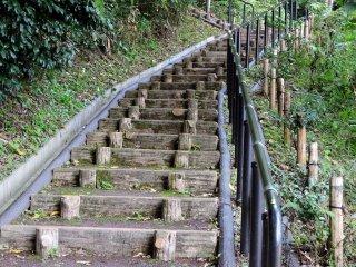 標高250メートルの亀山山頂まで延々と続く急な階段