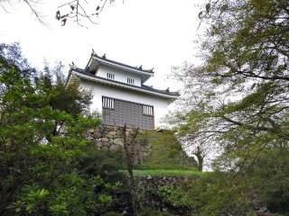 Echizen Ono Castle surrounded by greenery