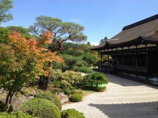 A vegetação é uma parte bastante importante deste templo. Transmite tanta serenidade...
