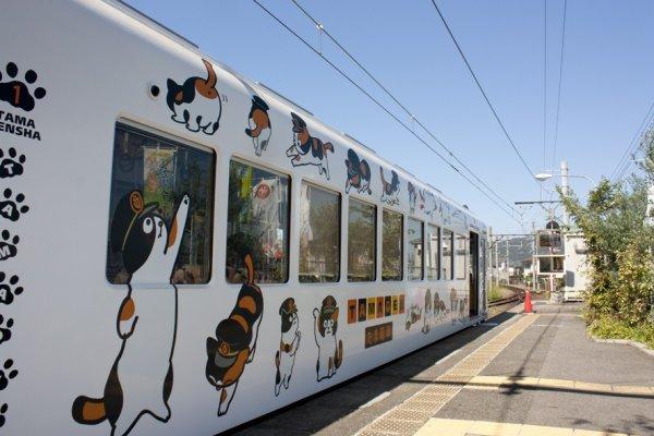นี่แหละโฉมหน้าของรถไฟสายแมวเหมียว Tama Line อันโด่งดัง ซึ่งนี่ก็คือรถไฟสาย The Kishigawa Line (貴志川線) วิ่งให้บริการระหว่างสถานี Wakayama จ.วากายาม่า (Wagayama) ไรถไฟสายแมวเหมียว Tama Line ที่โด่งดังนี้อันที่จริงก็คือรถไฟสาย The Kishigawa Line (貴志川線) ซึ่งวิ่งให้บริการระหว่างสถานี Wakayama จ.วากายาม่า (Wagayama) ไปยังสถานี Kishi เมืองคิโนกาว่า (Kinokawa) เป็นระยะทางกว่า 14.3 กม.
