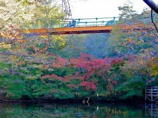 Jembatan Izumi dengan warna oranye dan hijaunya yang cerah mungkin merupakan titik fokus taman, terutama saat musim gugur karena menciptakan lanskap indah yang cocok dijadikan sebagai kartu pos yang bagus dari Kota Chiba!