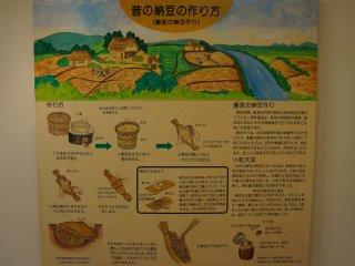Cara pembuatan natto sebelum didinginkan
