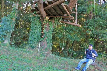 <p>Yokota Farm tree house and swing</p>