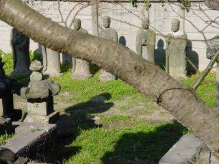 나이토 일가의 무덤은 주거 지역에 자리잡고 있었습니다.