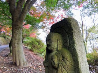 巨大な楓の足元に佇む石仏