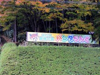 팬더랜드는 니시야마 공원 '모험의 숲'에 위치하고 있다