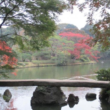 Rikugi-en Park, Bunkyo-ku, Tokyo
