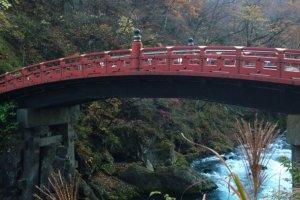 อีกมุมมองของสะพานชินเกียวท่ามกลางธรรมชาติอันงดงามในฤดูใบไม้เปลี่ยนสี