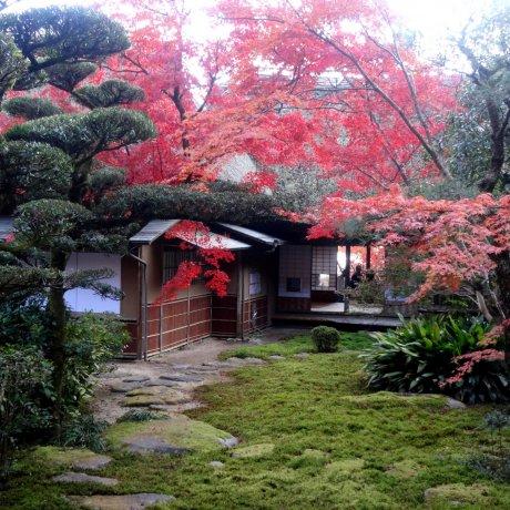 Kunenan Villa and Garden