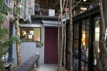<p>The caf&eacute; entrance hidden behind bamboo trees</p>