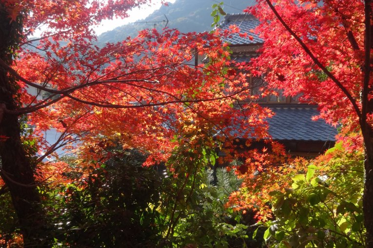 Vườn Kunenan
