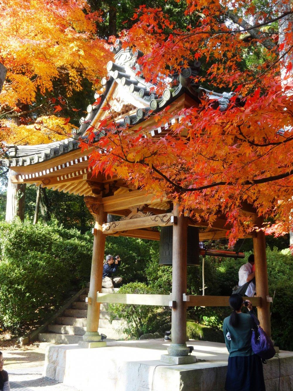 寺の鐘楼が、色とりどりのモミジで縁取られる