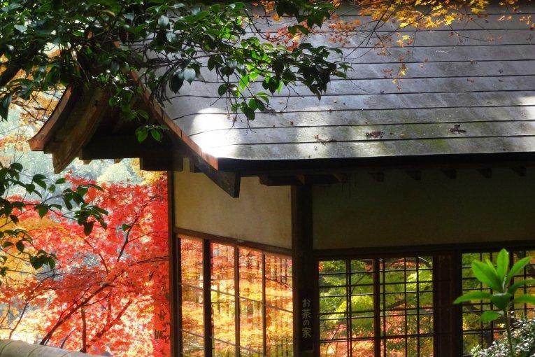 山の庭園 大興善寺