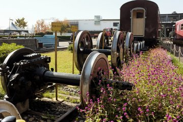 <p>Don&rsquo;t forget to also check this old train, located next to the locomotive house.</p>