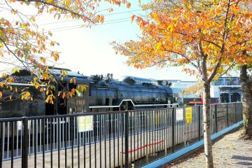 <p>Take a ride on a real steam locomotive train</p>