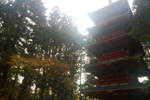 เจดีย์ 5 ชั้น หนึ่งในโบราณสถานสำคัญที่อยู่ด้านหน้าทางเข้าศาลเจ้านิกโกะโทโชกุ (Nikko Toshogu Shrine)
