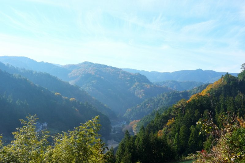 <p>Hike to the top of the hill and enjoy the grand view!</p>