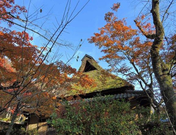 Casa de Campo, Parque Kakyo, Fukui