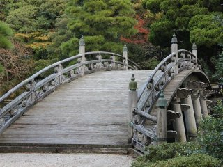 欅橋を渡れば木々の林に遊ぶことができる。見学者は渡ることができない