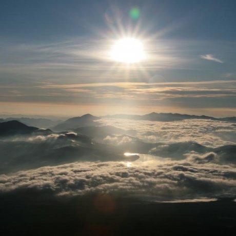 Mt. Fuji Guide Nori
