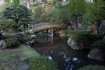 京都御所を歩く~6