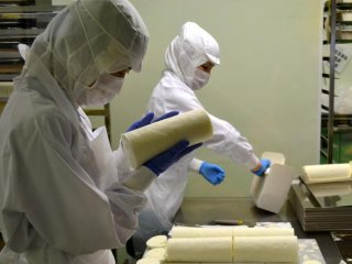 Meticulous inspection of the Shiroi Koibito white cream roll cakes