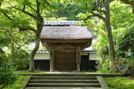 Ngôi đền Engaku-ji ở Kita-Kamakura