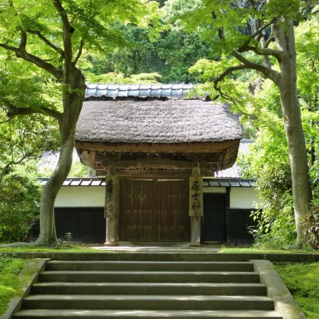 Kita-Kamakura's Engaku-ji Temple
