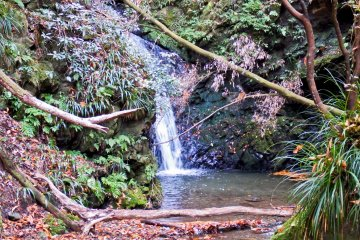 <p>`Kami-no-Mizu` waterfall</p>