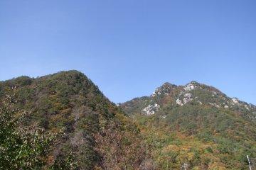 <p>Breathing the clean mountain air</p>